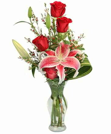 Red Rose Lily