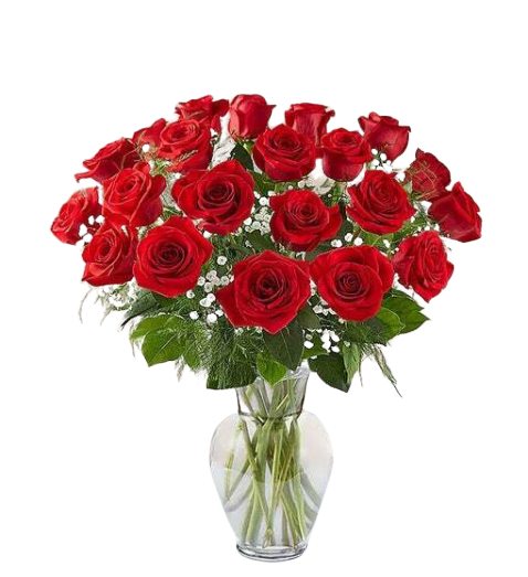Be Mine 24 Red Roses