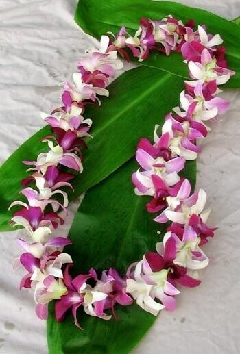 Lei Fresh Hawaiian Orchid