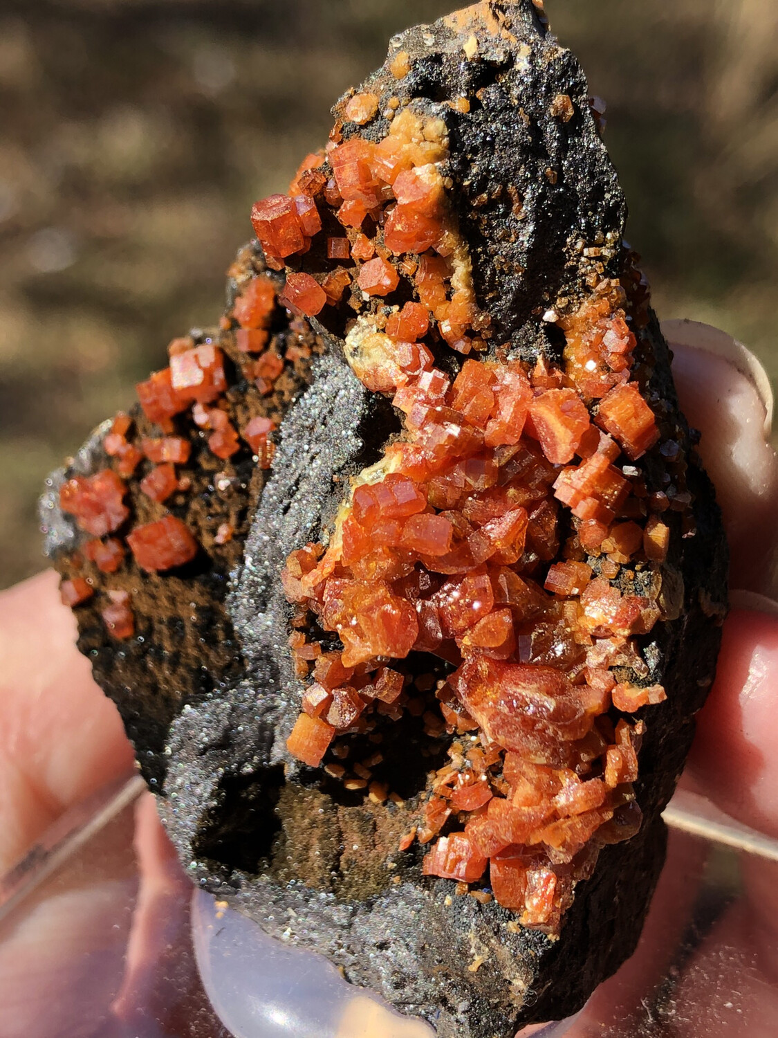 Vanadinite And Goethite