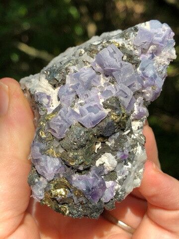 Galena With Fluorite And Chalcopyrite