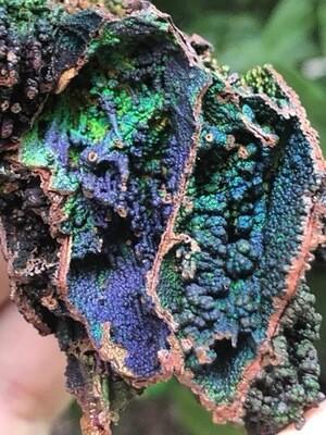 Turgite With Iridescent Hematite