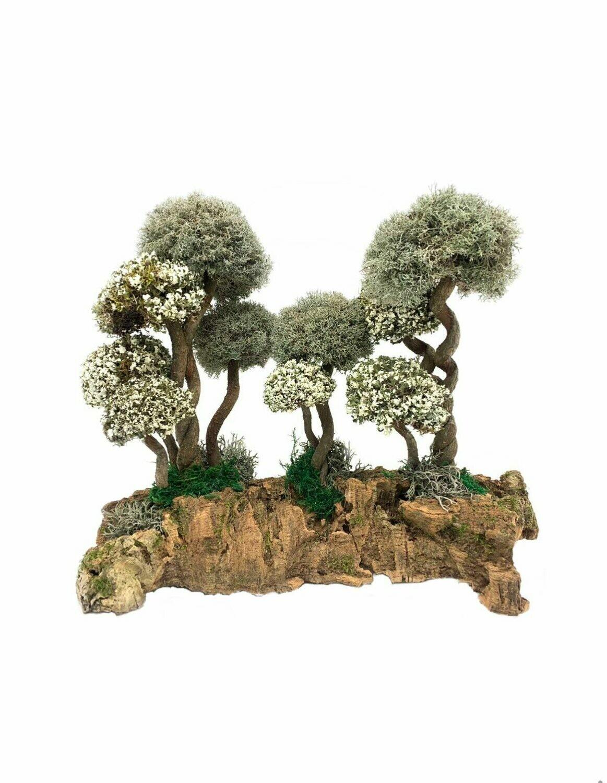 Композиция деревья с кронами из цетрарии