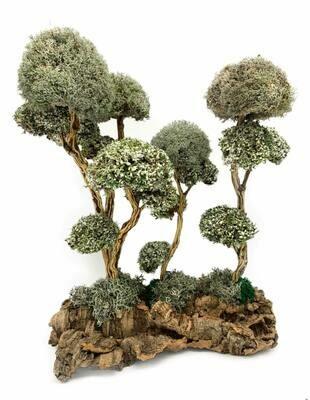 Композция деревев с кронами из цетрарии