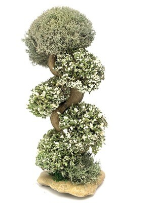 Дерево сувенир  с кронами цетрарии