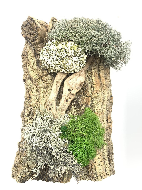 Панно с деревом из цетрарии