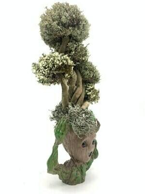 Фантастический Грут с деревом из цетрарии