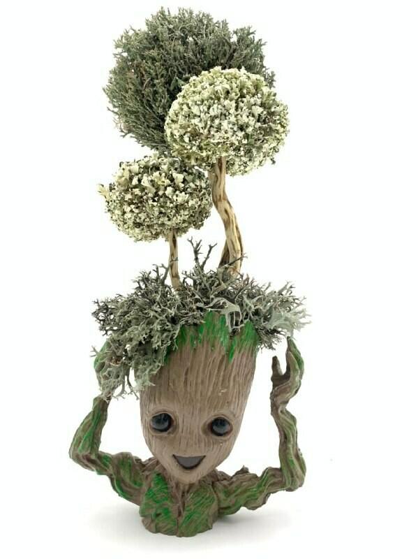 Грут с деревом из цетрарии