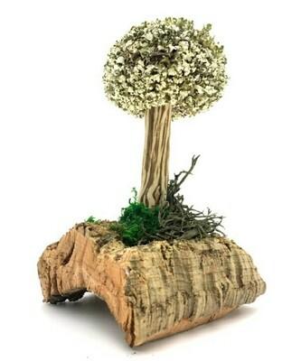Дерево с кроной из цетрарии