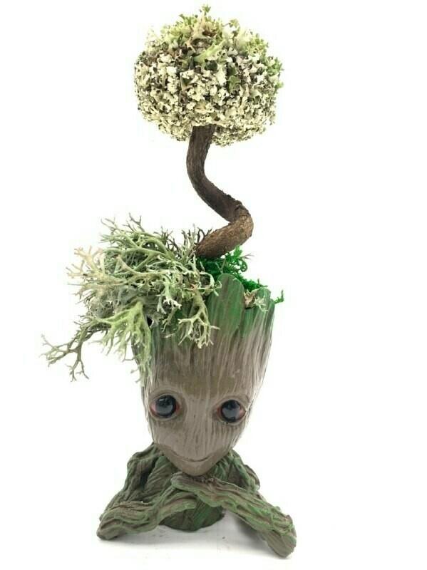 Страж Галактики с деревом из цетрарии