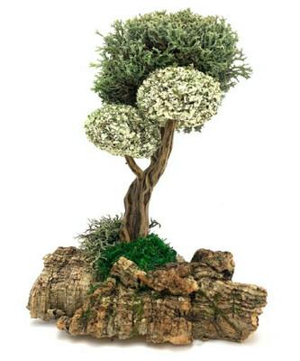 Деревце с кронами из цетрарии