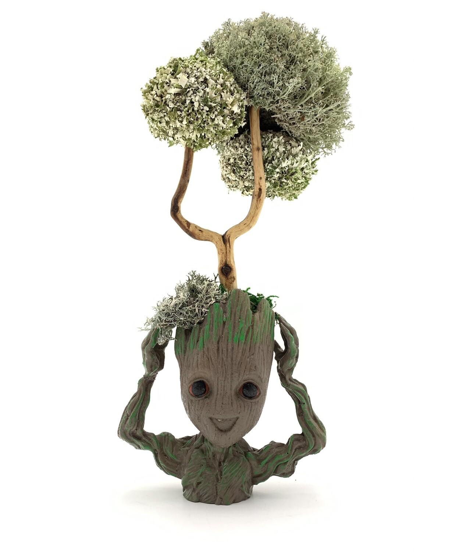 Грут с целебным деревцем