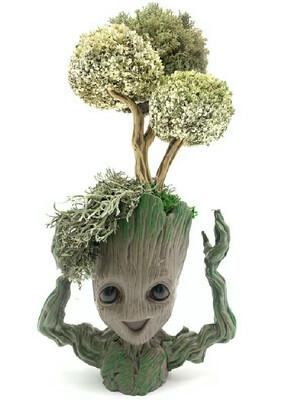 Дерево из цетрарии в кашпо Сказочный Грут