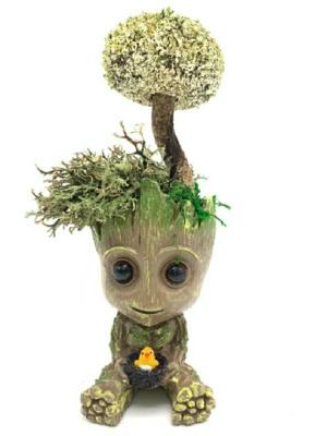 Малыш Грут с деревцем из цетрарии