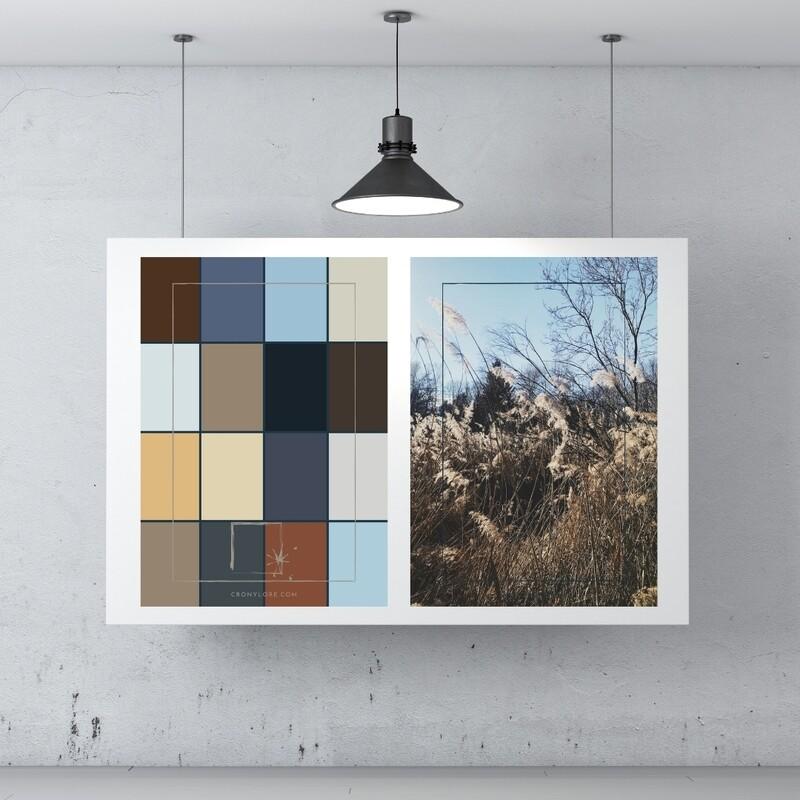 Field + Colour Palette (Poster Edition 2021/1)