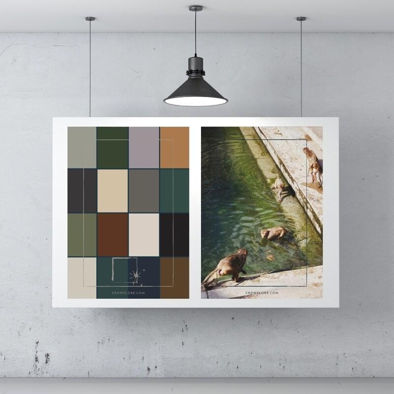 Monkeys + Colour Palette (Poster Edition 2021/1)