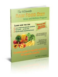 The Ultimate Raw Food Detox and Wellness Program - 100-page handbook