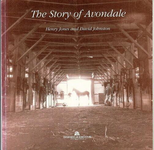 The Story of Avondale by Henry Jones and David Johnston