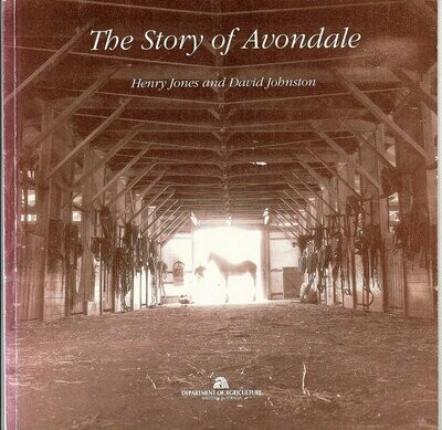 The Story of Avondale by Henry Jones and David Johnston