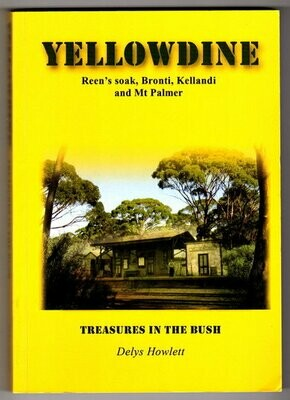 Yellowdine: Treasures in the Bush: Reen's Soak, Bronti, Kellandi and Mt Palmer by Delys Howlett
