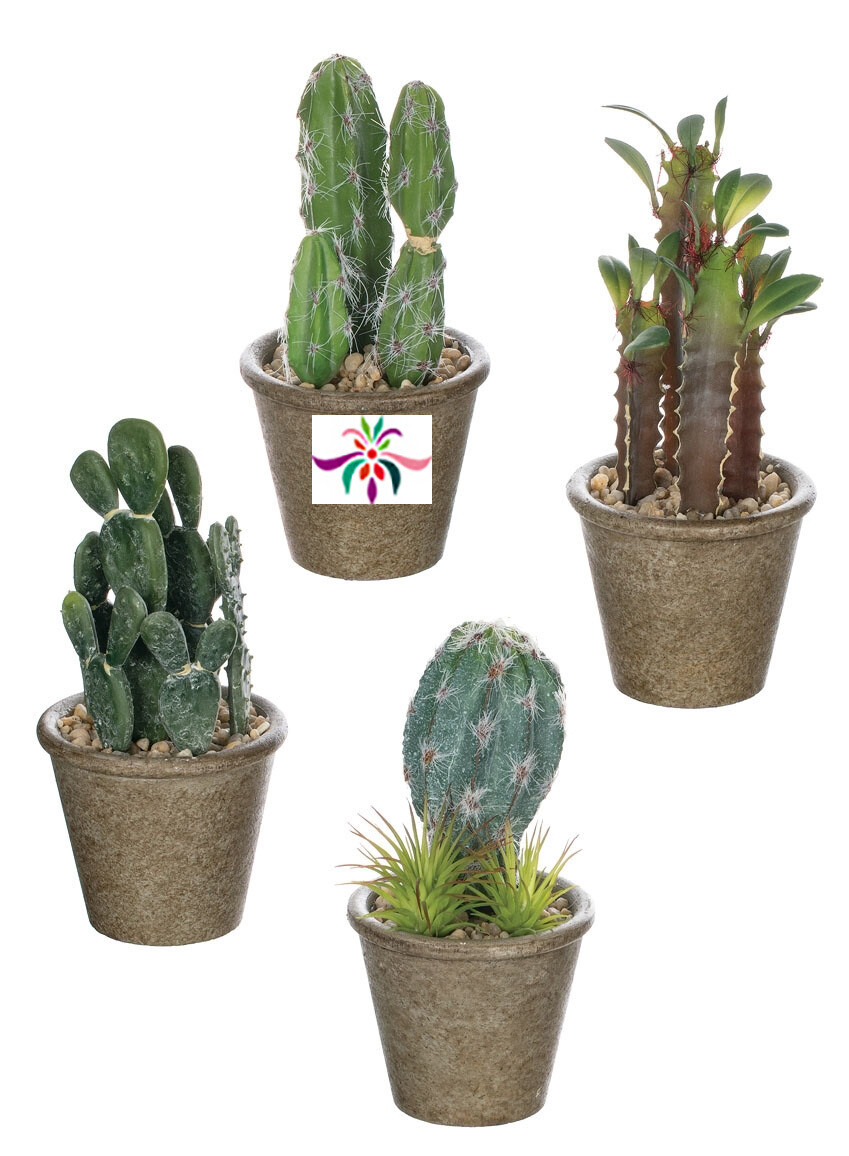 """Potted Cactus - Green - Small - 8""""H x 3.5""""W"""
