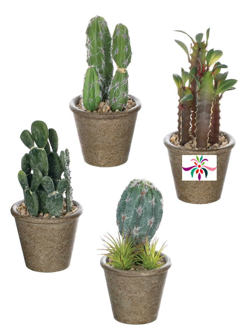 "Potted Cactus - Brown & Green - Small - 7""H x 3.5""W"