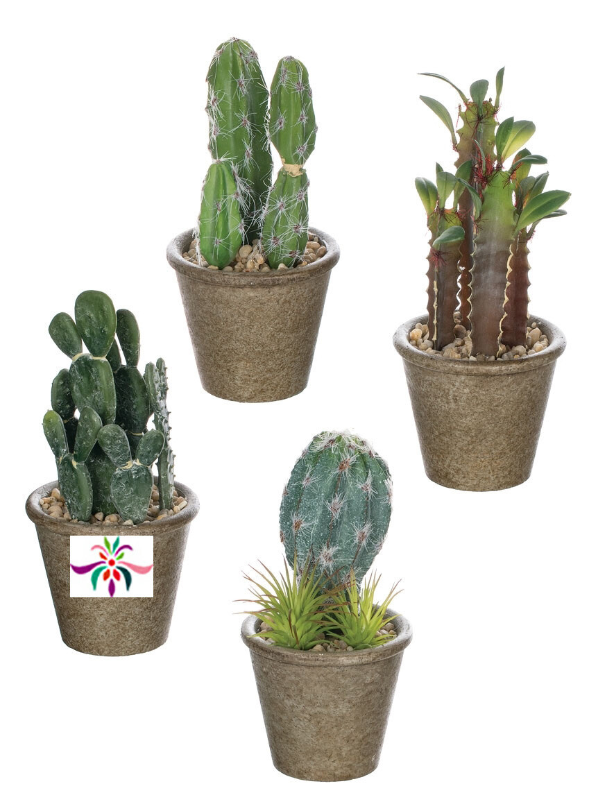 """Potted Cactus - Dark Green - Small - 6.5""""H x 3.5""""W"""