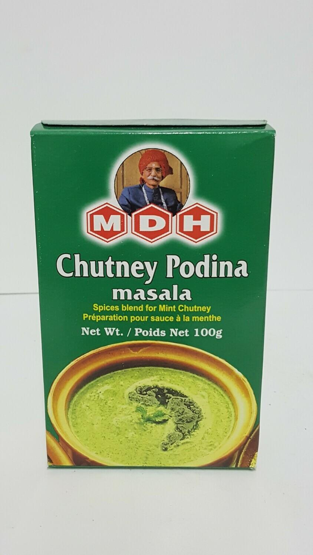 Chutney Podina Masala MDH 100 g