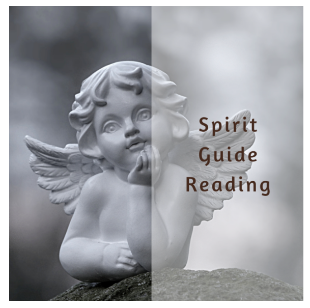 Spirit Guide Reading
