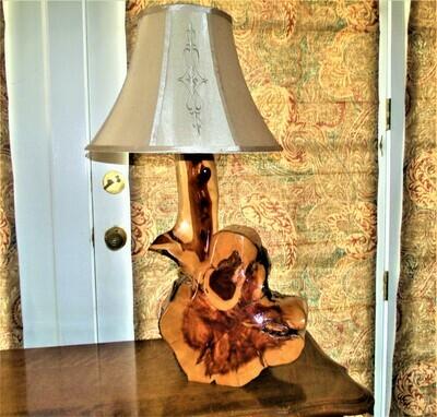 Rustic Cedar Slab Cactus Lamp