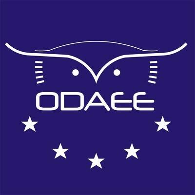 Donación para la creación de la Fundación ODAEE