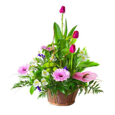 Spring has sprung basket