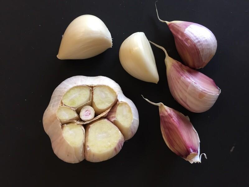 25# Organic Garlic Seed