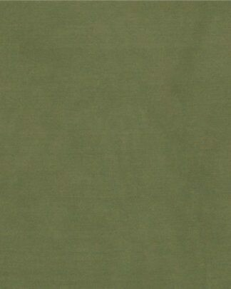 Sage Solid Silk Scarf