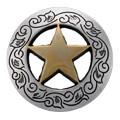 1-1/8 Inch Diameter Gold Star Concho