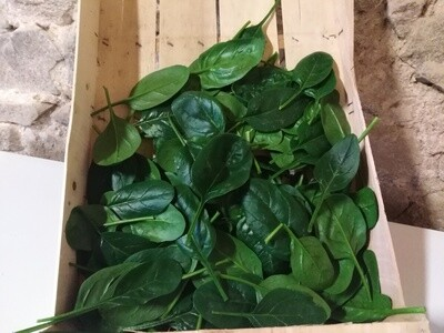 Epinards (les 100 gr)