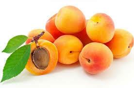 x Abricot (le kg)