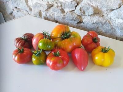 Tomate ancienne (au kg)