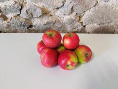 x Pomme Crimson crisp (le kg)