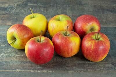 x Pomme Delflopion (au kg)