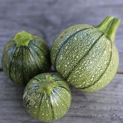 Courgette verte ronde, (la pièce, entre 400 et 600 gr)