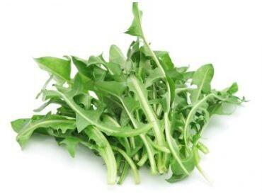 Pissenlit, (les 100 gr)