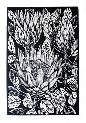 "Original Lino Print ""King Protea"""
