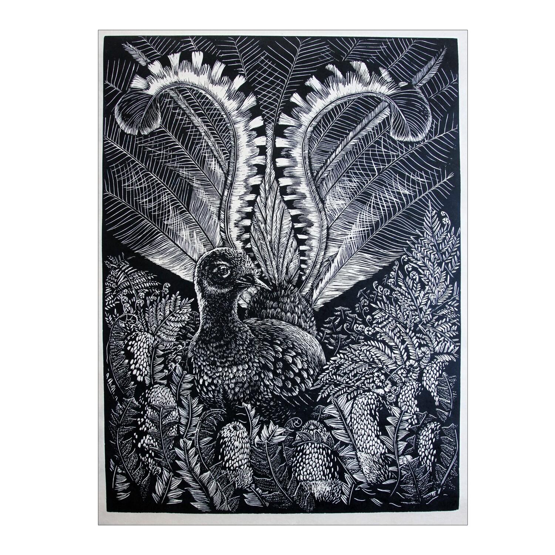 "Original Limited Edition Hand Printed Lino  ""The Lyrebird"""