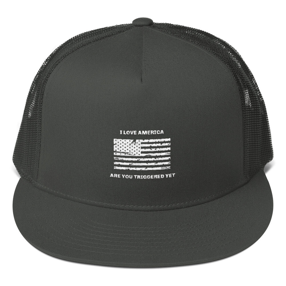 Mesh Back Snapback - Are you Triggered