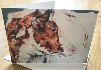 'Strickley Geri 34' Light Roan Shorthorn - Blank Greetings Card