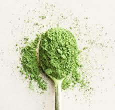 Culinary Matcha Powder