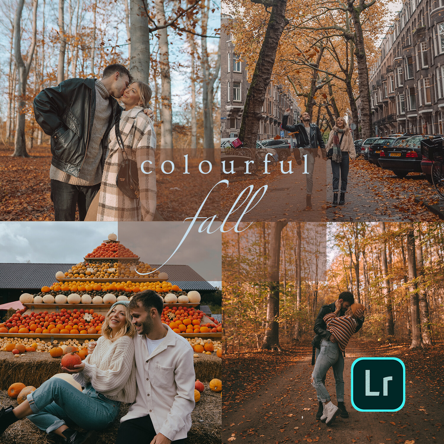 Colorful Fall - Autumn Collection 2.0