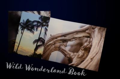 Wild Wonderland Book