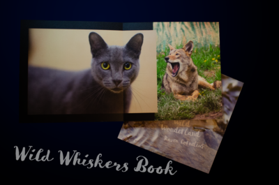 Wild Whiskers Book